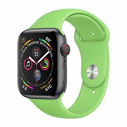 Ремешок для Apple Watch 38/40mm COTEetCI W3 Silicone Band Green